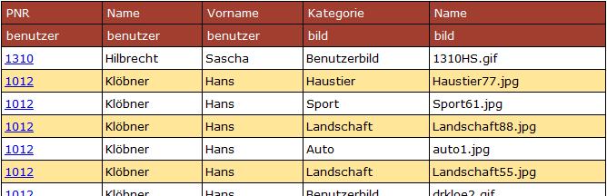 Ergebnistabelle des SQL-Befehls. Benutzer aus Trier mit ihren Bildern. Nur relevante Attribute werden gezeigt.